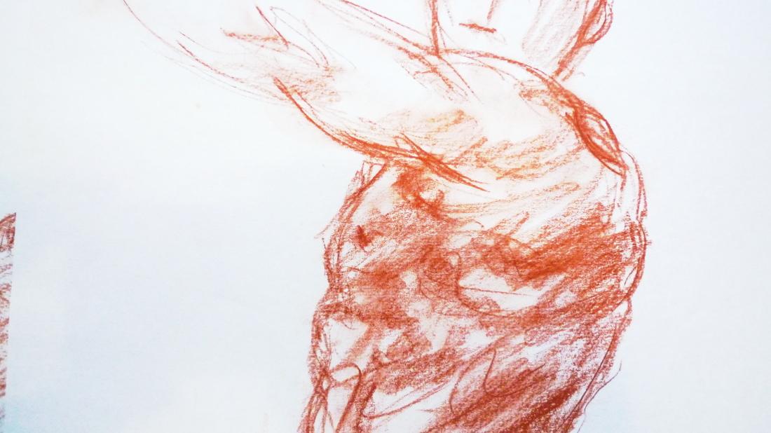 Bild Anatomie fur Kunstl erinnen und Künstler